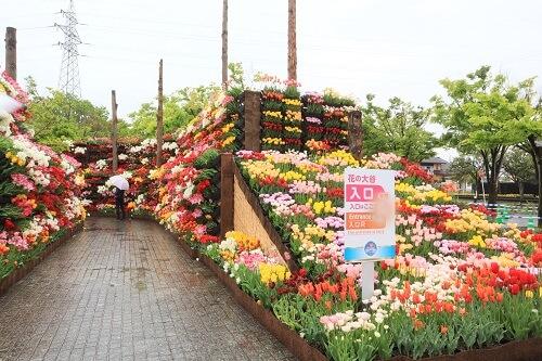 花の大谷入り口